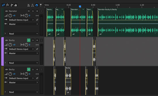 Editing Audio in Adobe Audition