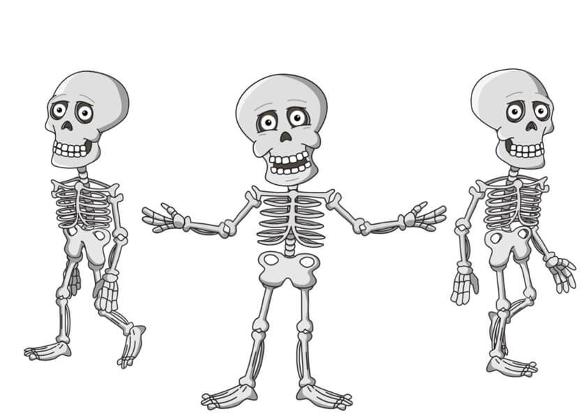 Bare Bones Brooklyn puppet available for Adobe Character Animator